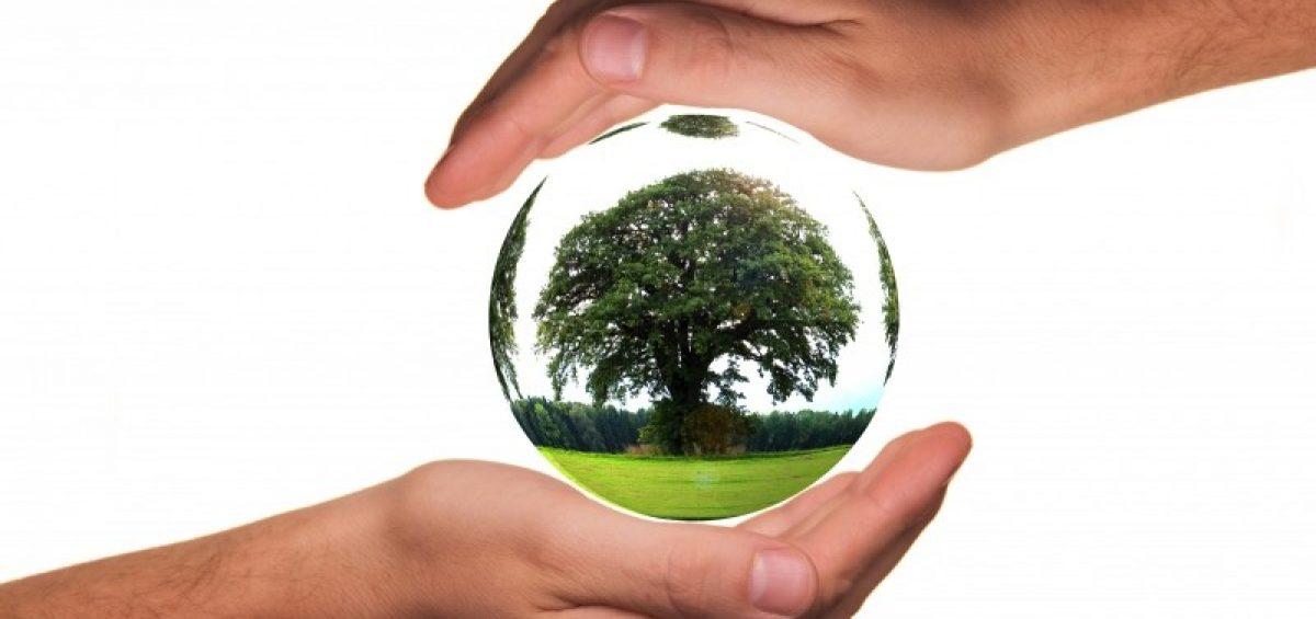 Occmarketing-empresa-ecologica